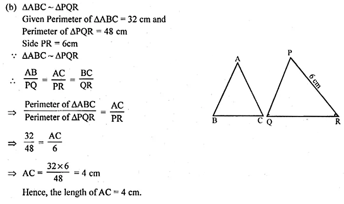 ML Aggarwal Class 10 Solutions for ICSE Maths Chapter 13 Similarity Ex 13.1 10