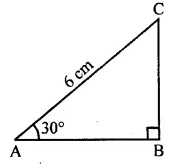 ML Aggarwal Class 10 Solutions for ICSE Maths Chapter 20 Heights and Distances MCQS 1