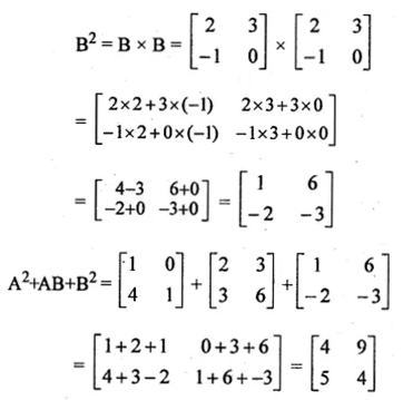 ML Aggarwal Class 10 Solutions for ICSE Maths Chapter 8 Matrices Ex 8.3 15