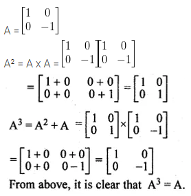 ML Aggarwal Class 10 Solutions for ICSE Maths Chapter 8 Matrices Ex 8.3 17