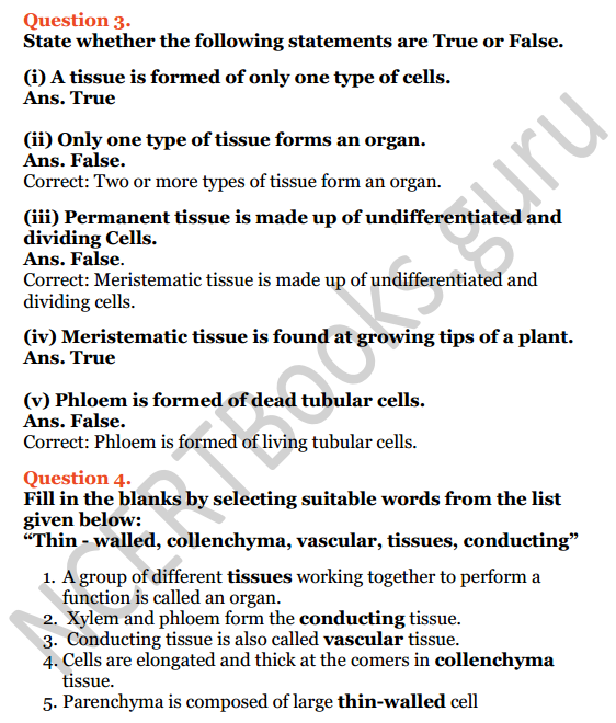 Selina Concise Biology Class 7 ICSE Solutions Chapter 1 Plant and Animal Tissues 4