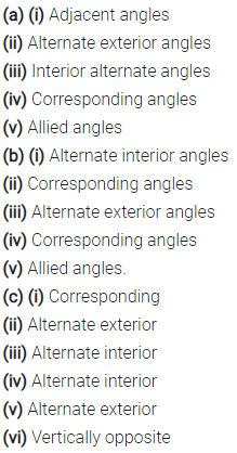 Selina Concise Mathematics Class 6 ICSE Solutions Chapter 25 Properties of Angles and Lines Ex 25B 6