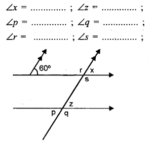 Selina Concise Mathematics Class 6 ICSE Solutions Chapter 25 Properties of Angles and Lines Ex 25B Q5