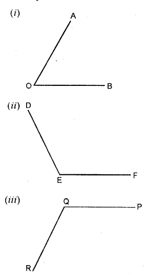 Selina Concise Mathematics Class 6 ICSE Solutions Chapter 25 Properties of Angles and Lines Ex 25C Q1