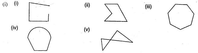 Selina Concise Mathematics Class 6 ICSE Solutions Chapter 28 Polygons Ex 28A Q1