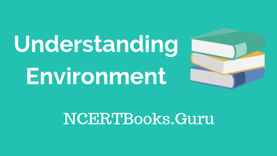 Old NCERT Geography Understanding Environment