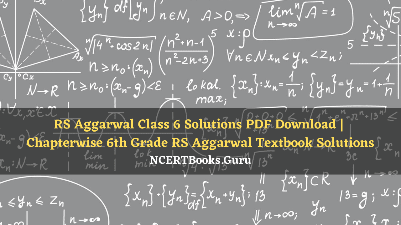 RS Aggarwal Class 6 Solutions