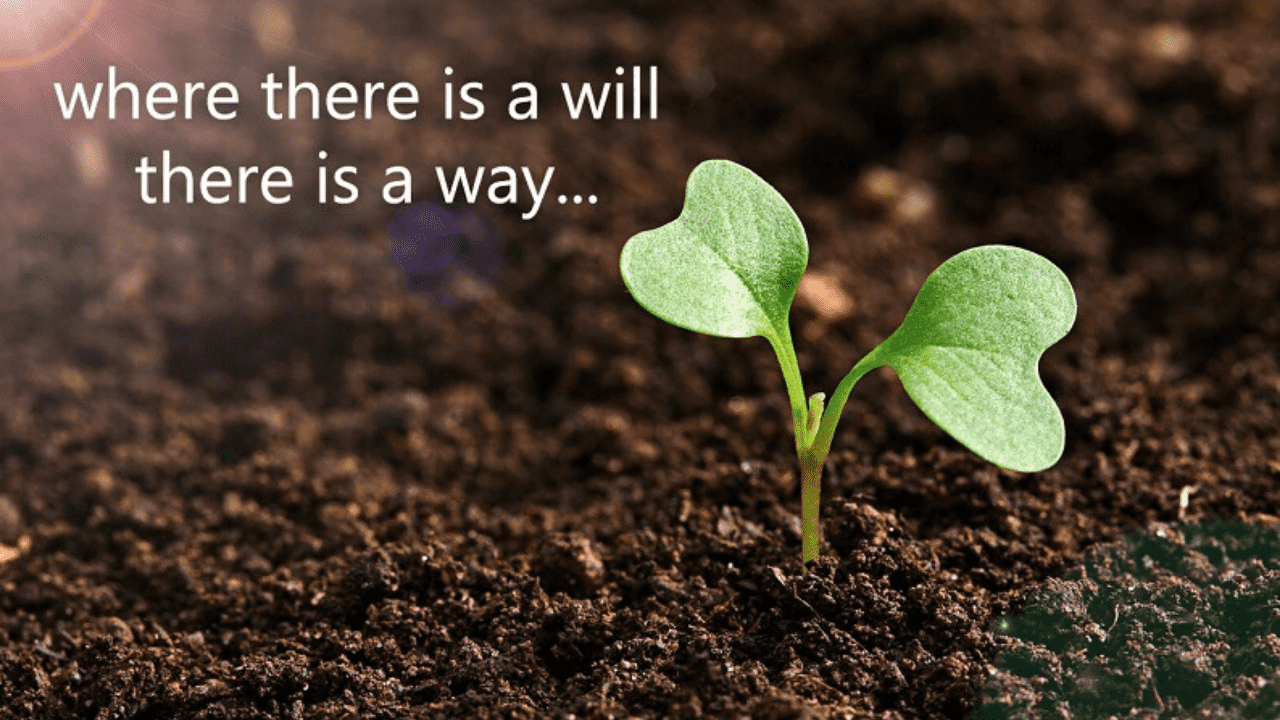 Essay on Where There is a Will There is a Way