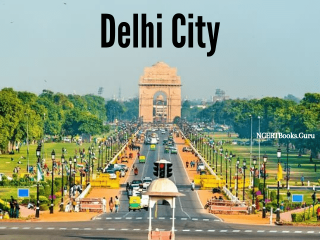 delhi 2nd most populated city in the world