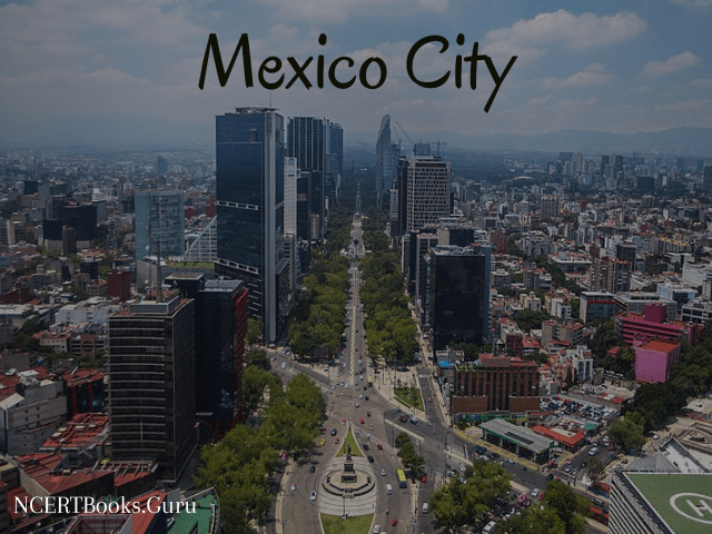 fifth populated city of the world mexico city