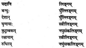 NCERT Solutions for Class 7 Sanskrit Chapter 10 विश्वबंधुत्वम् 5
