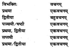NCERT Solutions for Class 7 Sanskrit Chapter 10 विश्वबंधुत्वम् 6