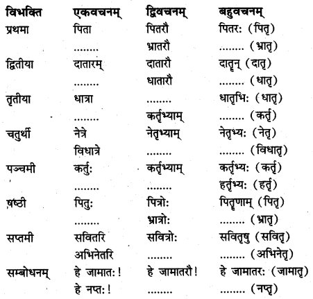 NCERT Solutions for Class 7 Sanskrit Chapter 14 अनारिकायाः जिज्ञासा 2