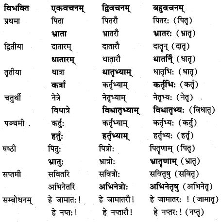 NCERT Solutions for Class 7 Sanskrit Chapter 14 अनारिकायाः जिज्ञासा 3