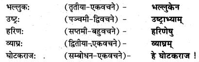 NCERT Solutions for Class 7 Sanskrit Chapter 15 लालनगीतम् 9