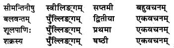 NCERT Solutions for Class 8 Sanskrit Chapter 15 प्रहेलिकाः Q4.2