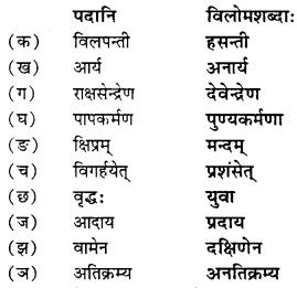 NCERT Solutions for Class 9 Sanskrit Shemushi Chapter 10 जटायोः शौर्यम् 6