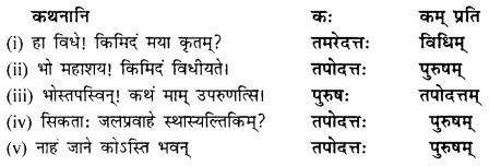 NCERT Solutions for Class 9 Sanskrit Shemushi Chapter 9 सिकतासेतुः 2
