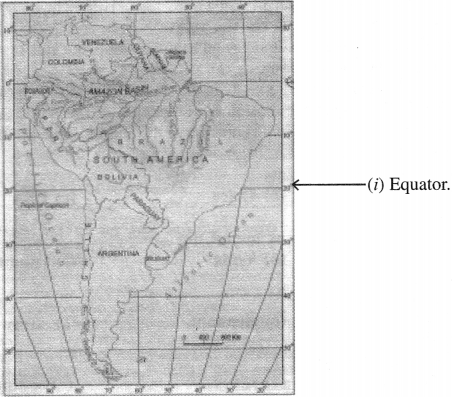 NCERT Solutions for Class 7 Social Science Geography Chapter 8 Human Environment Interactions The Tropical and the Subtropical Region 2