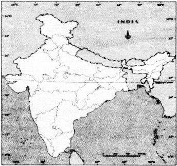 NCERT Solutions for Class 8 Social Science Civics Chapter 1 The Indian Constitution 4