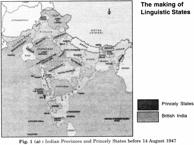 NCERT Solutions for Class 8 Social Science History Chapter 12 India After Independence 1