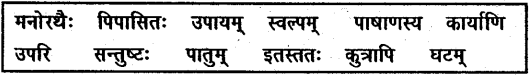 NCERT Solutions for Class 6 Sanskrit Chapter 11 पुष्पोत्सवः 3
