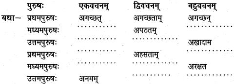 NCERT Solutions for Class 6 Sanskrit Chapter 14 अहह आः च 1