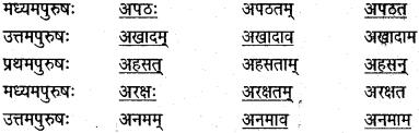 NCERT Solutions for Class 6 Sanskrit Chapter 14 अहह आः च 2