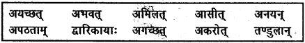 NCERT Solutions for Class 6 Sanskrit Chapter 14 अहह आः च 3