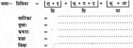 NCERT Solutions for Class 6 Sanskrit Chapter 2 शब्द परिचयः 2 10