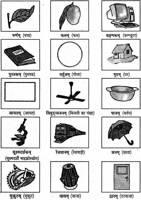 NCERT Solutions for Class 6 Sanskrit Chapter 3 शब्द परिचयः 3 1