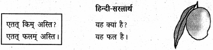 NCERT Solutions for Class 6 Sanskrit Chapter 3 शब्द परिचयः 3 3