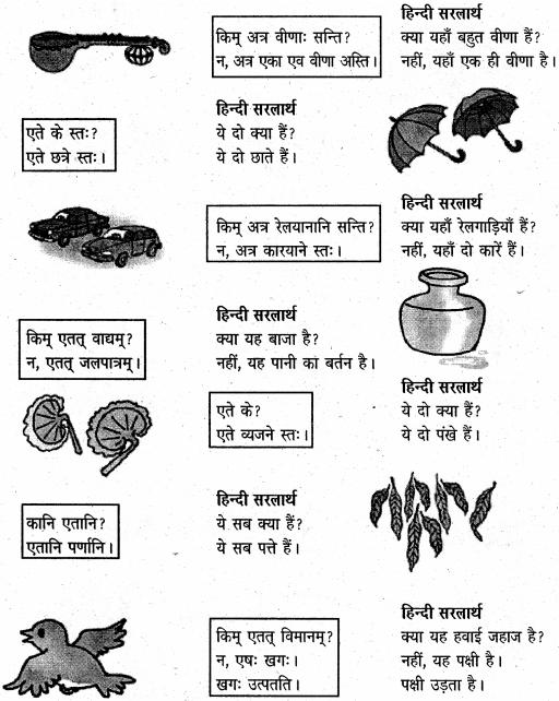 NCERT Solutions for Class 6 Sanskrit Chapter 3 शब्द परिचयः 3 5