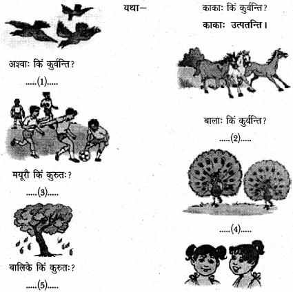 NCERT Solutions for Class 6 Sanskrit Chapter 3 शब्द परिचयः 3 7