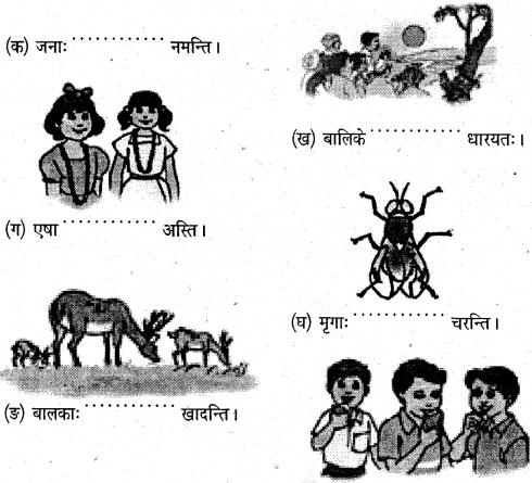 NCERT Solutions for Class 6 Sanskrit Chapter 5 वृक्षाः 1