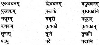 NCERT Solutions for Class 6 Sanskrit Chapter 5 वृक्षाः 2
