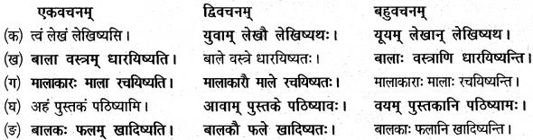NCERT Solutions for Class 6 Sanskrit Chapter 5 वृक्षाः 6