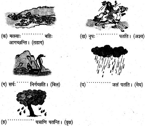 NCERT Solutions for Class 6 Sanskrit Chapter 8 सूक्तिस्तबकः 2