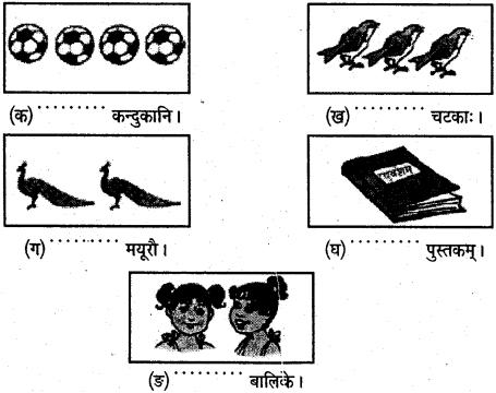 NCERT Solutions for Class 6 Sanskrit Chapter 9 क्रीडास्पर्धा 1